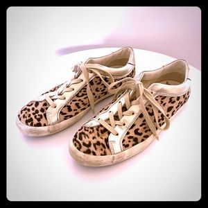 Sam Edelman distressed leopard sneakers, size 10